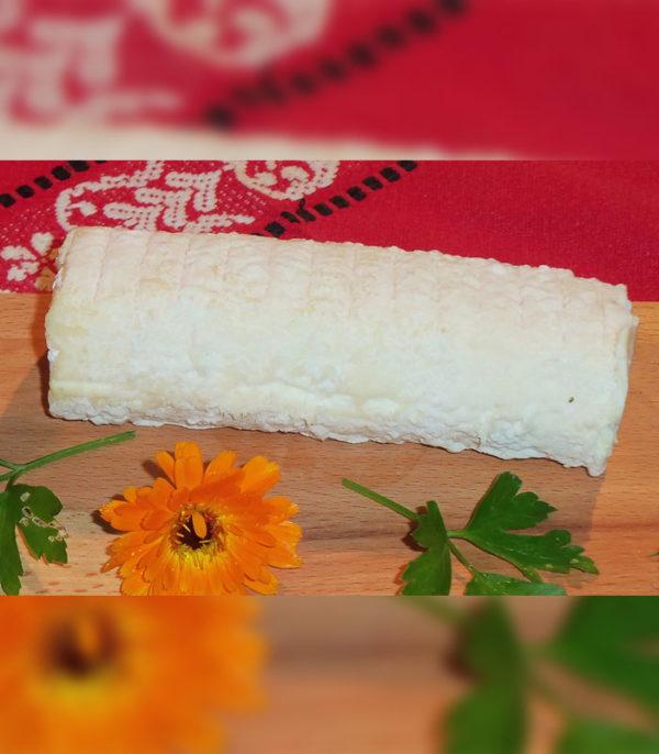 Manger bio en circuit court du fromage de chèvre à Bordeaux et Bassin d'Arcachon