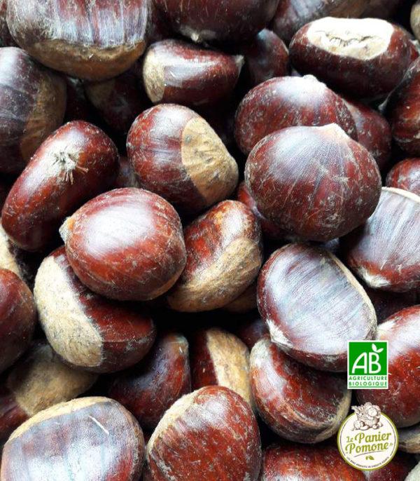 Le Panier de Pomone, livraison de chataignes bio et fruits et legumes bio en circuit court à La Teste, Arcachon et Bordeaux
